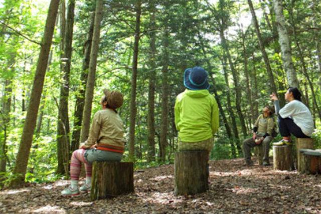 【群馬・草津温泉・森林セラピー・セラピスト派遣】楽しく散策!ネイチャーセラピー