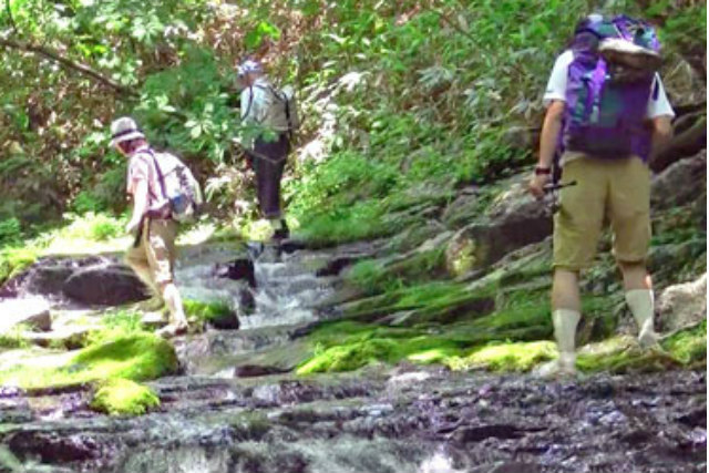 【群馬・嬬恋村・森林セラピー】奇勝の沢を歩く!源流の森を訪ねる