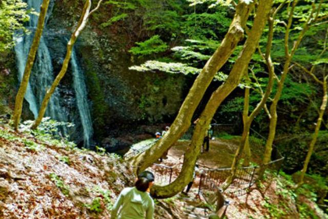 【群馬・世立八滝・森林セラピー・セラピスト派遣】澄んだ水と森を堪能!