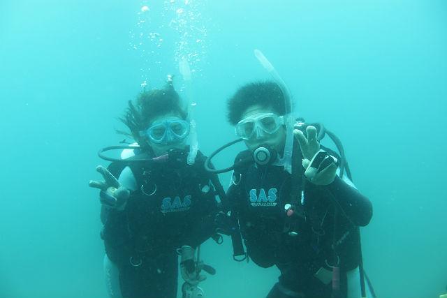 【館山・ダイビング】NAUI公認、初心者大歓迎!千葉の海でお手軽体験ダイビング!