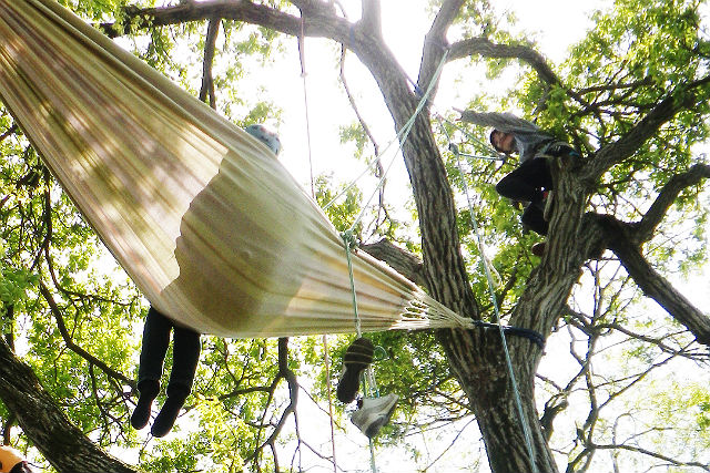 【滋賀高島・木登り】至福のツリーカフェ!ハンモックで森の時間を満喫する木登りツアー