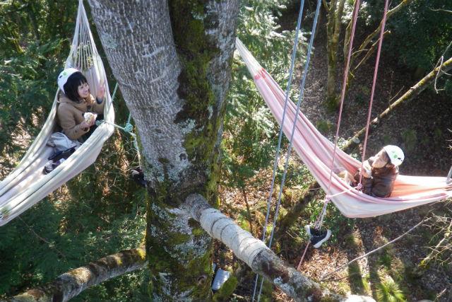 【滋賀・くつきの森・木登り】至福のツリーカフェ!ハンモックで森の時間を満喫する木登りツアー