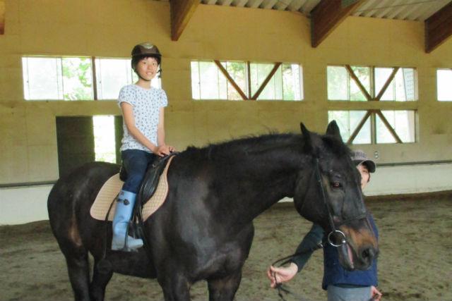 【福井県あわら市・乗馬】スタッフが綱をひく馬に乗ってお散歩しよう!ベビーも歓迎のひき馬体験!