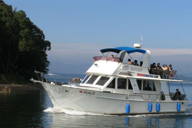 【静岡・浜名湖・チャータークルージング】野鳥観察も!自然や風景を満喫する80分プラン