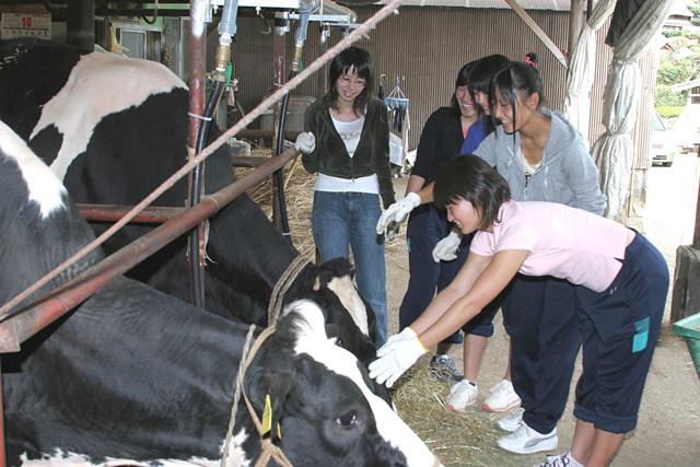 【長崎県松浦市・農業体験】田舎料理を一緒に作ろう!農村民家ステイ体験