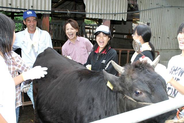 【長崎県松浦市・農業体験】可愛い子牛がお出迎え!和牛農家体験プラン