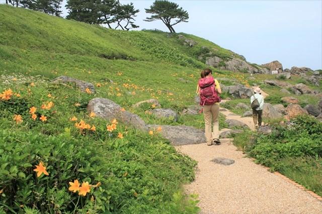 【青森・1.5時間・トレッキング】「みちのく潮風トレイル」を気軽に歩こう!1.5時間トレッキングプラン