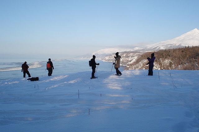 【北海道知床・トレッキング】流氷を見に行こう!冬の絶景をめぐる、スノーシュー体験