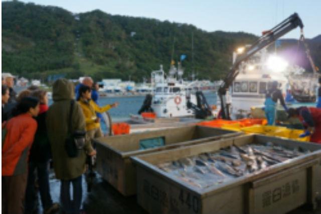 【知床・エコツアー】港ガイドと活気あふれる市場へ行こう!秋サケ市場見学ツアー