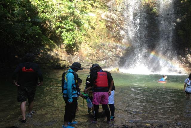 【沖縄今帰仁村・トレッキング】やんばるの森を歩こう!自然いっぱいの滝つぼツアー
