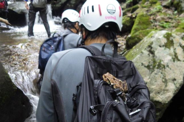 【鳥取県・1日・キャニオニング】「幻の滝」を目指して沢登り!くそぎ谷1日コース