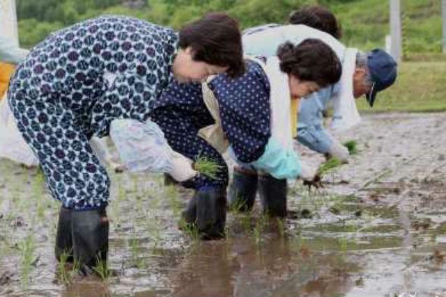 【山形・農業体験・1泊2日】お子さまの成長の糧に!最高品質のお米を作れる田植え・田舎体験