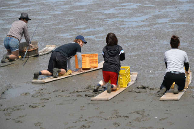 【佐賀・釣り】有明の干潟でムツゴロウを釣ろう!むつかけ体験プラン!