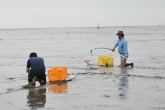 【佐賀・釣り】有明海のエイリアンを釣ろう!すぼかき体験プラン!