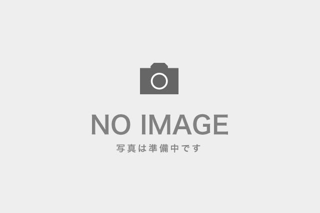 【軽井沢・エコツアー】上信鉱山焼成炉跡へ!幻の塔を訪ねるエコツアー