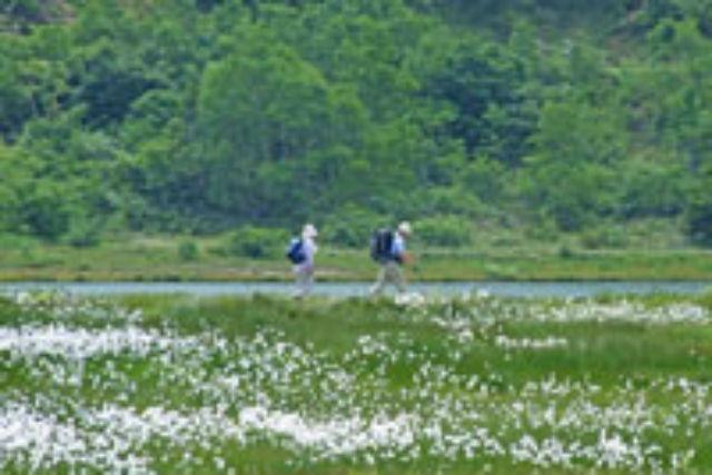 【群馬・草津白根山・登山】白根レストハウスから周回する草津白根山コース