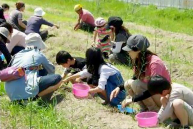 【鳥取倉吉・農業体験】珍しいアスパラガスの収穫体験!その場で焼いて食べられます