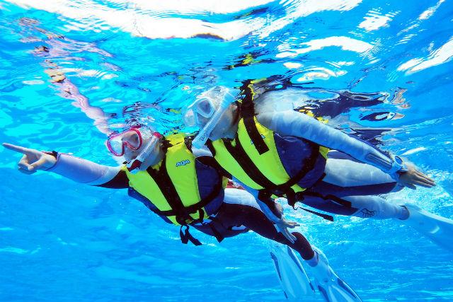 【静岡・伊豆・スノーケリング】ボートで絶景スポットへ!海上アスレチックも無料で満喫!