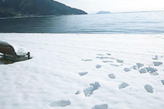 【琵琶湖・スノーシュートレッキング】歩きやすいスノーシューで琵琶湖岸をお散歩