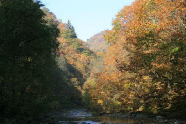 【青森・弘前・エコツアー】ブナ林散策道と暗門の第3の滝を巡るエコツアー