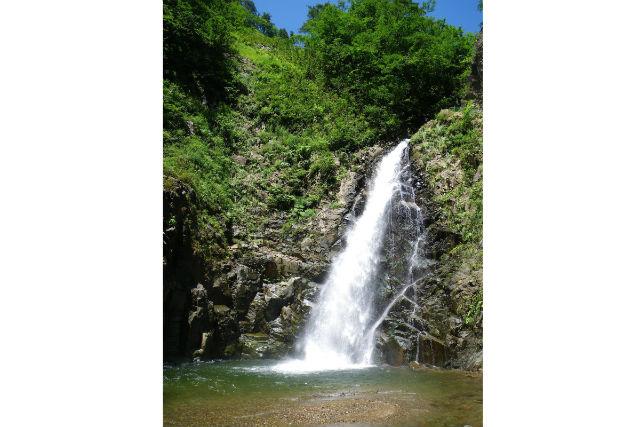 【青森・弘前・エコツアー】震災復興支援プラン!ブナ林を通り抜けて暗門第三の滝を目指す