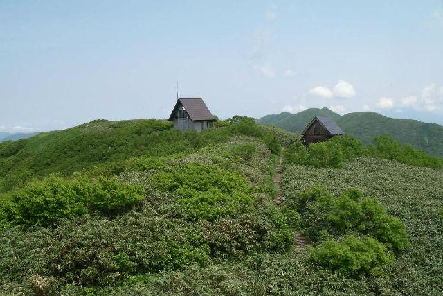 【青森・弘前・登山ツアー】白神山地の代表!白神岳プライベート登山ツアー