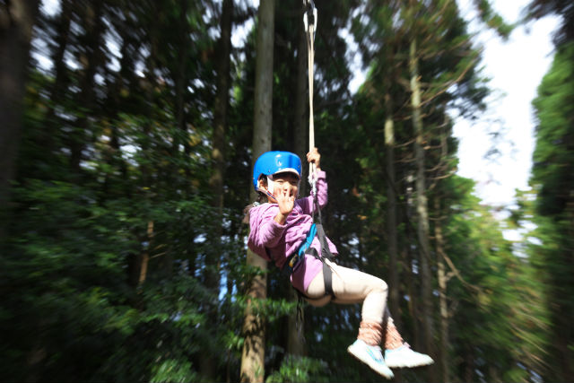 【鳥取県西伯郡・ツリークライム&ジップライン】森を疾走!100m超えジップライン