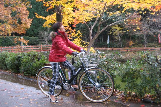 【京都・レンタサイクル・ミドルシティ】市内観光にどうぞ!かご付きだから荷物も楽々