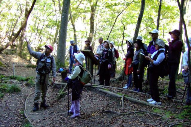 【栃木・日光・ハイキング】気軽に日光の大自然を楽しむ!龍王峡ハイキング・半日ツアー