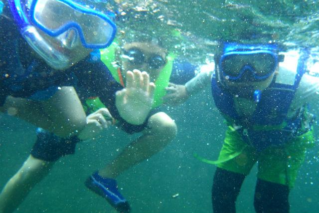 【徳島県・自然体験】シュノーケルで川遊び!お子さまと一緒に水に親しもう!