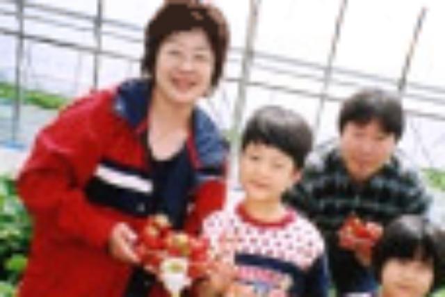 【栃木・イチゴ狩り】たわわに実った大粒イチゴ!完熟とちおとめ30分食べ放題プラン
