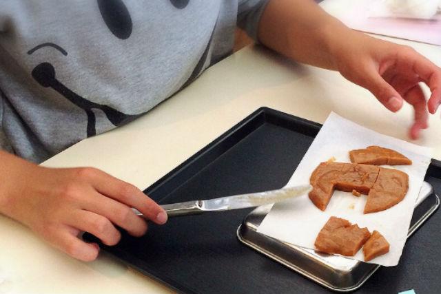 【北海道・七飯町・料理教室】手作りの生キャラメル!北海道ならではの味わいに