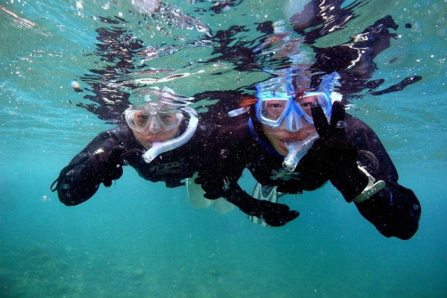 【山口県長門市・シュノーケリング】山陰の美しい景勝地!青海島の水中を覗いてみよう