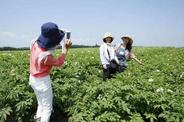 【北海道・農業体験】ランチ付き!北海道名産、じゃがいもを知る