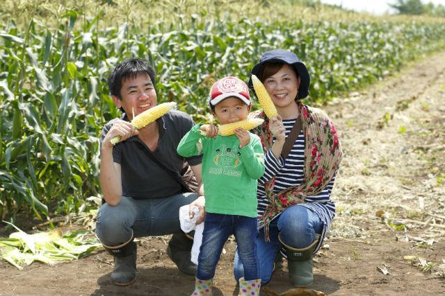 【北海道・農業体験】ランチ付き!トウモロコシ本来の甘さをそのまま味わう
