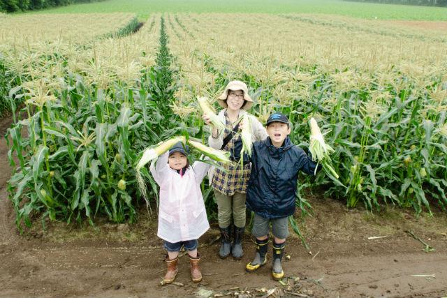 【北海道・農業体験】おやつ付き!こだわり農家で食す、もぎたてトウモロコシ
