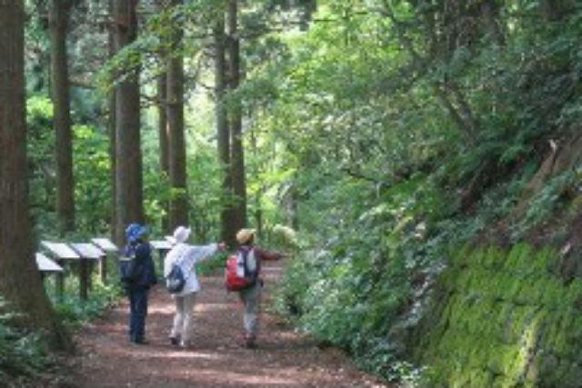 【函館市・ガイドツアー】北海道遺産!函館山の要塞跡と自然を見学