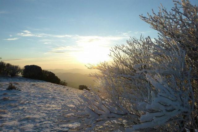 【奈良・大淀町・登山ツアー】霧氷を観に行こう!三峰山・雪山登山プラン