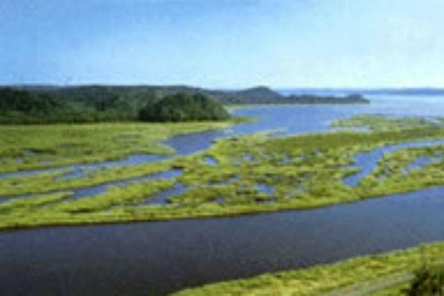 【北海道・根室・カヌー】見たことのない風景に遭遇しよう!温根沼縦断コース