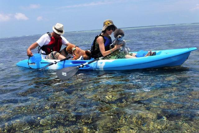 【沖縄北部・シーカヤック】ゆったり水中観察!ファミリーにもオススメのカヤック