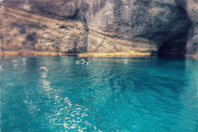 【小樽・クルージング】船でしか行けない魅力のスポットへ。青の洞窟・窓岩コ-スを満喫しよう