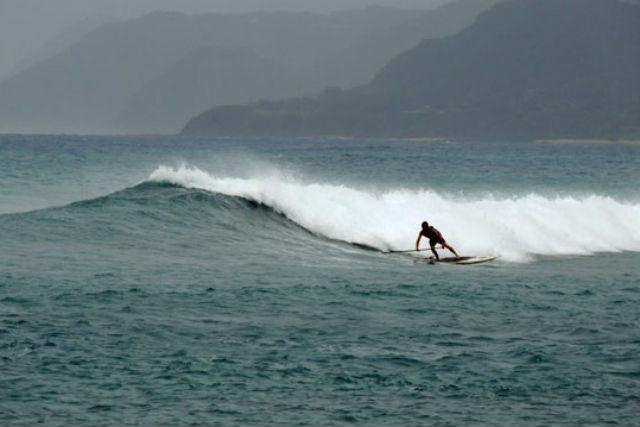 【奄美大島・SUP】ガイドがベストスポットへ!透明度の高い海でサーフィン三昧!