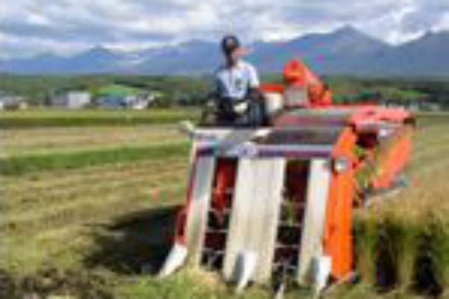 【三重・美杉町・農業体験】とれたて野菜を収穫していただきます!農業体験