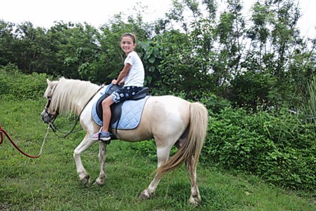 【沖縄・宮城島・乗馬体験】自由な乗馬散歩を楽しめる!操作練習&外へのお散歩・40分