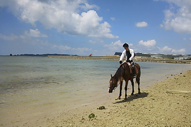 【沖縄・宮城島・乗馬体験】乗馬しながら浜辺をお散歩!ビーチ乗馬・60分