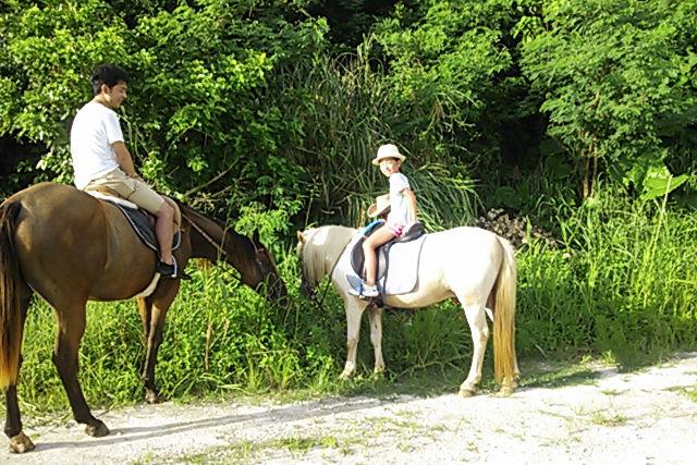 【沖縄・宮城島・乗馬体験】馬と一緒に森を歩こう!林トレッキング・60分