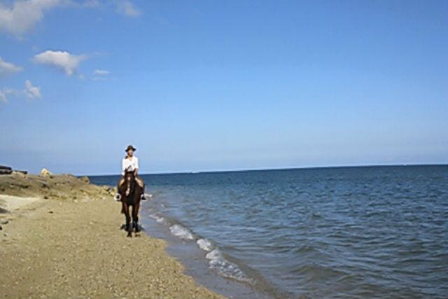 【沖縄・宮城島・乗馬体験】宮城島を馬とまわろう!山と海を満喫コース・120分