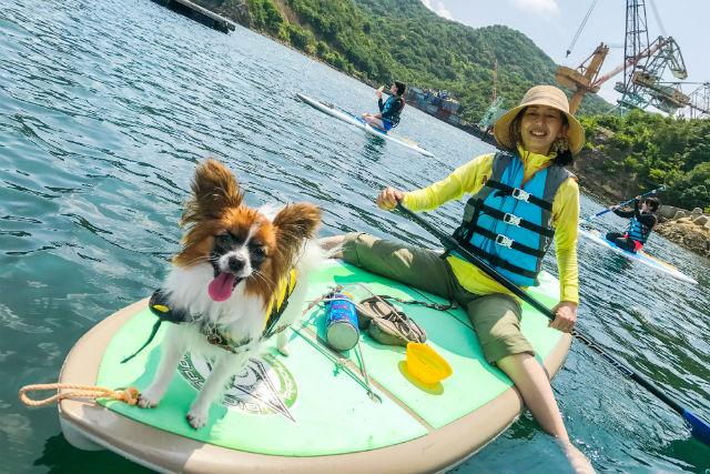 【淡路島・SUP】愛犬と一緒に水上さんぽSUP体験(写真撮影付)