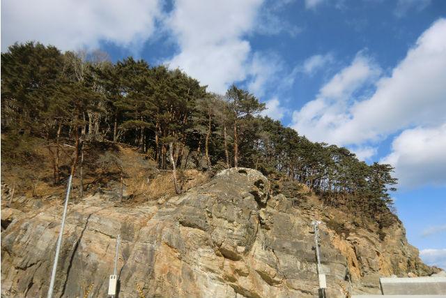 【岩手・ガイドツアー】地層や化石から、地球の歴史を読み解く!たのはたジオパークガイド