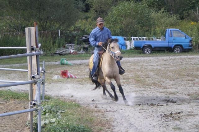 【北海道・北広島市・乗馬体験】北海道の大自然をお散歩!ホーストレッキング